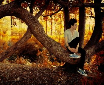 Rothaus_Eulogy_Trees_short